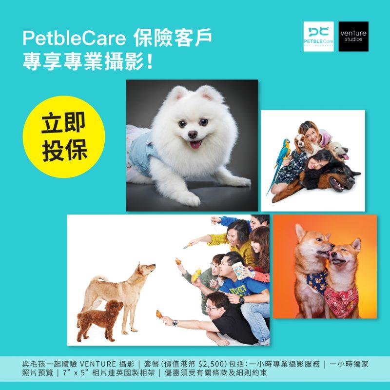 PetbleCare Venture studios 推廣優惠